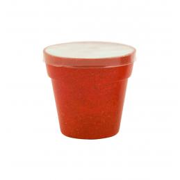 Petunia - ghiveci AP731428-05, roșu