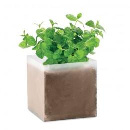 """MINT - Compost cu semințe """"MINT""""      MO9546-13, Beige"""