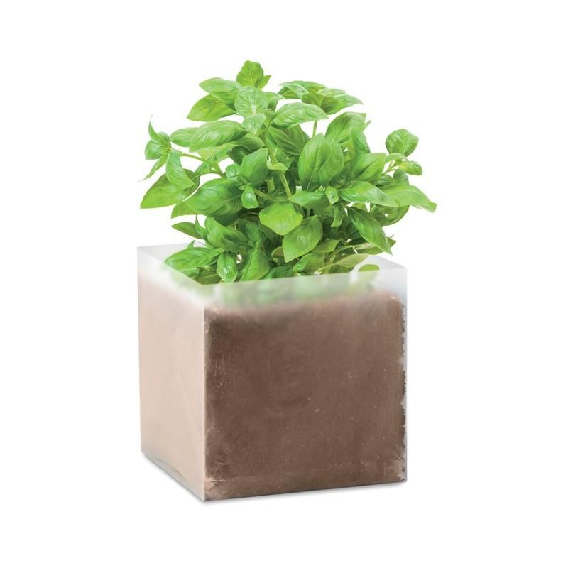 """BASIL - Compost cu semințe """"BASIL""""     MO9545-13, Beige"""